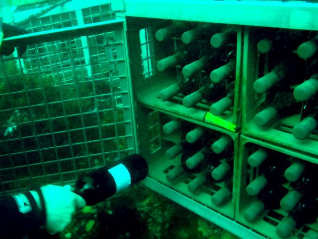 vino submarino buenos vinos